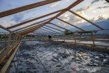 Pertambakan garam sistem tunel di Talise Palu