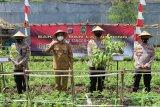 Kota Yogyakarta tambah satu Kampung Tangguh Nusantara di Kelurahan Bener