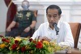Presiden meminta satgas-gubernur seimbangkan urusan pandemi dan ekonomi