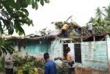 Hujan deras disertai angin kencang, rumah warga Alai ini rusak tertimpa pohon