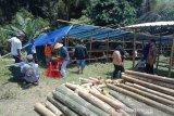 DP3 Sleman telah mengungsikan 139 ternak warga lereng Merapi