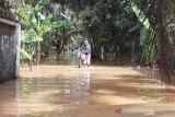Banjir kembali genangi beberapa desa di Cilacap