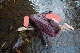 Geger! warga Sikur Lombok Timur temukan mayat pria tanpa identitas di sungai