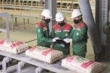 Semen Baturaja optimalisasi distribusi produk di tengah pandemi