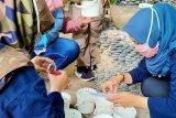 Yogyakarta mengingatkan masyarakat waspadai potensi merebaknya DBD