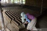 Pekerja menata batu bata di salah satu usaha batu bata rakyat, desa Lamsenong, Kecamatan Baitussalam, Kabupaten Aceh Besar, Aceh, Rabu (18/11/2020). Sejumlah pengusaha di daerah industri batu bata rakyat itu menyatakan, produksi batu bata mereka berjalan normal dan tidak terdampak pandemi COVID-19 karena permintaan masih stabil dengan harga penjualan Rp650 per bata. Antara Aceh/Ampelsa.