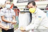 Pemkab Keerom:produksi jagung kering siap dikirim ke Blitar