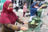 118 KK di Kota Semarang dapat pelatihan urban farming