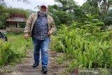 Pembangunan pabrik jadi solusi perkebunan sawit rakyat, kata Halikinnor