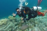 Wamendes PDTT optimistis Wakatobi jadi destinasi wisata unggulan Indonesia