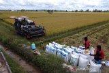 Bulog Sultra ingatkan mitra selektif membeli beras di musim hujan