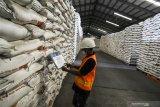 Peneliti: Antisipasi tingkat konsumsi  beras nasional yang meningkat
