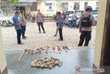 Polisi tahan 13  pendukung calon bupati terlibat tawuran