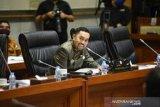 Ahmad Sahroni minta Polri tindak tegas aksi rasisme