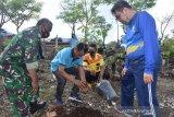 Jasa Raharja NTT tanam 100  pohon