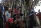 Para kepala suku di lereng Gunung  Lewotolok gelar ritual
