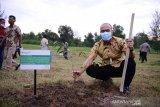 PT Timah gandeng bumdes di Belitung Timur kelola wisata Kampung Reklamasi Selinsing
