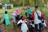 Hari Nusantara, Gelorakan Budaya Bahari