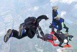Sejumlah prajurit pasukan khusus dari Batalyon Intai Amfibi 2 (Taifib 2) Marinir Pasmar 2, melakukan formasi terjun bebas (free fall) saat latihan di atas Lanudal Juanda, Sidoarjo, Jawa Timur, Selasa (15/12/2020). Latihan terjun free fall tersebut dalam rangka memelihara dan meningkatkan kemampuan, keterampilan serta profesionalisme aspek udara para prajurit Taifib 2 Marinir Pasmar 2. Antara Jatim/Serka Mar Kuwadi/Um