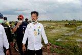 Akhir Desember pengolahan lahan food estate diharapkan selesai, kata Mentan RI