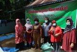 Program berkelanjutan bantu penggemukan sapi mitra UMKM Elvina di Padang Pariaman.