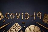 Terus bertambah, kumulatif positif COVID-19 Kalteng capai 9.103 kasus