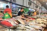 Pemerintah perlu tingkatkan konsumsi ikan