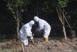 Angka kematian COVID-19  di Sumsel tembus 600 kasus