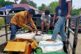 KLHK sita ratusan kg daging rusa ilegal di Labuan Bajo