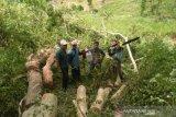 DLHK NTB: terdapat korelasi antara kebutuhan kayu dengan pidana kehutanan