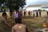 DKI musnahkan 1,3 ton daging babi yang didistribuskani secara ilegal