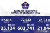 Kasus konfirmasi positif COVID-19 Indonesia bertambah 8.002, jadi 735.124 kasus