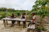 Babinsa-Bhabinkamtibmas lakukan komunikasi sosial dengan petani Keerom
