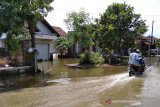 Tanggul sungai di Kudus jebol, ratusan rumah warga terendam banjir