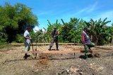 Babinsa Koramil Warbah bantu bangun pondasi rumah warga binaan