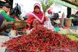 Harga cabai merah  keriting tembus Rp100.000/Kg