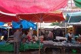 Selama 2020, produksi ikan tangkap di Padang capai 19.539,6 ton