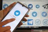 Pengguna Telegram dan Signal melonjak usai WhatsApp keluarkan persyaratan baru