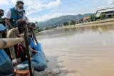 Gubernur Ridwan Kamil sebar benih ikan di Sektor 6 DAS Citarum