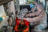 Seorang pasien positif COVID-19 meninggal dunia di Bulungan