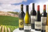 Israel ekspor anggur ke UAE