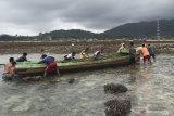 Warga Natuna temukan perahu terdampar tanpa awak