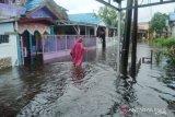 Banjir di Banjarmasin semakin tinggi, sebagian warga mulai mengungsi