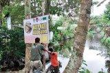 BKSDA tingkatkan sosialisasi bahaya serangan buaya di Kotim