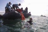 Pencarian Sabtu (16/1) KRI Kurau evakuasi satu kantong jenazah SJ 182