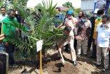 Pemkab Agam usulkan peremajaan kebun sawit seluas 2.830 hektare