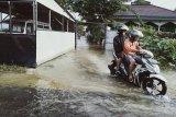 Banjir tinggi di Banjarmasin belum surut