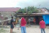 Pohon tumbang timpa rumah warga di Padang