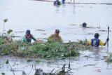 Ratusan pegawai Pemkot Palembang bersihkan kawasan Pulau Kemaro