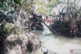 Pencarian korban diterkam buaya di Pasaman Barat terus dilakukan menggunakan tiga perahu (Video)